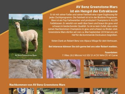 Greenstone Mars Alpakahengst fawn Bayern