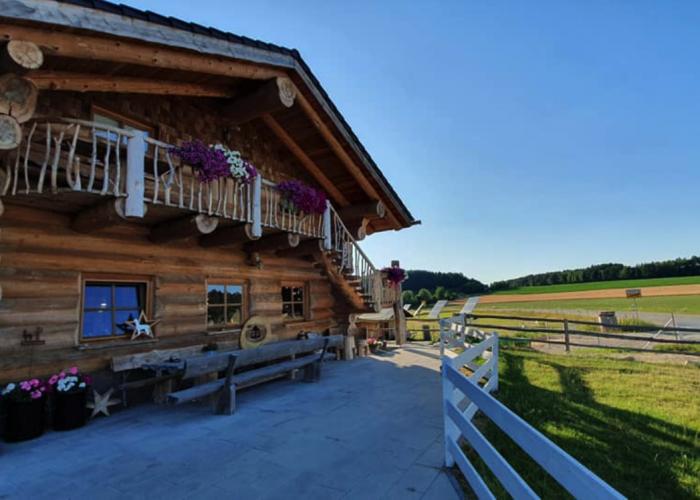 Urlaub im Holzblockhaus Alpakas