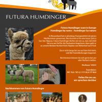 Futura Humdinger